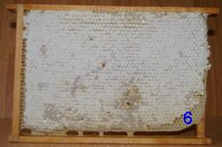 корм для пчел на зиму